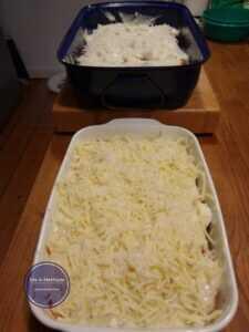Cannelloni mit Käse